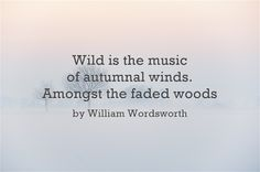 Wild is the music of Autumn winds. Amongst the faded woods. ~ William Woodworth