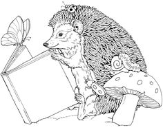 coloring hedgehog read a book picture - Hedgehog Coloring Pages