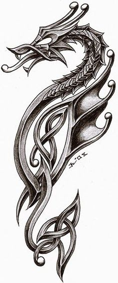 dragon in celtic style. i'm very satisfied inspiration - tattoo studio zagreb - zele celtic dragon 2 Chinese Tattoo Designs, Dragon Tattoo Designs, Celtic Dragon Tattoos, Viking Tattoos, Viking Dragon Tattoo, Tattoo Celtic, Tribal Dragon Tattoos, Sea Horse Tattoos, Celtic Tattoo Meaning