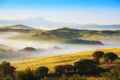 Photograph Fields of Gold by Anel Alijagić on 500px  Val d' Orcia #Tuscany