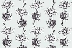 Spring Magnolias on Behance