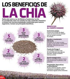 > http://wp.me/p5pv9j-GJ < LEE 11 BENEFICIOS DE LA SEMILLA DE CHÍA - Img NTX