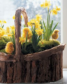 Daffodils and Pom Pom Chicks - 80 Fabulous Easter Decorations You Can Make Yourself (Love the bark basket too). Easter Crafts, Holiday Crafts, Easter Decor, Easter Ideas, Easter Centerpiece, Centerpiece Ideas, Holiday Ideas, Centerpieces, Table Decorations