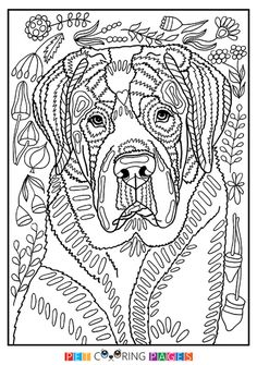 Free printable Saint Bernard coloring page available for download. Simple and detailed versions for adults and kids.