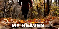 Fall really is the best time of the year. Best running weather