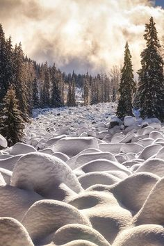 Winter Cascade, snow covered stone river in the Vitosha National Park in Bulgaria, by Martin Stantchev