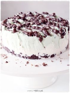 Mint-chocolate ice cream cake.