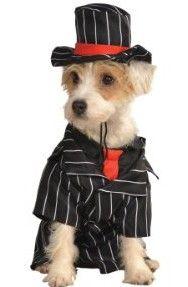 Rubies Costume Halloween Classics Collection Pet Costume, Medium, Gangster image 001