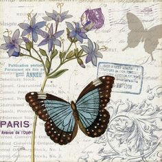 Trademark Fine Art 'Papillon Tales II' Canvas Art by Pela Studio, Size: 35 x Gray Vintage Cards, Vintage Paper, Vintage Images, Vintage Butterfly, Butterfly Art, Butterflies, Image Deco, Shabby, Illustrations