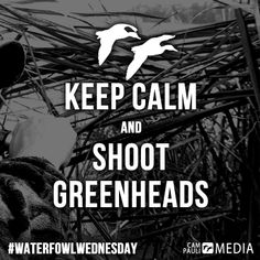#DuckHunting #Hunting #Waterfowl #Greenhead #Ducks #WaterfowlWednesday