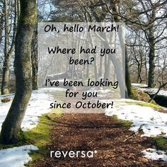 Hello March... Before the snowstorm hits Montreal tonight, let us dream of spring and the promise that March brings  #hellomarch #march #spring #montreal #springpromise
