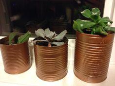 Succulent copper planters