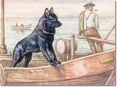 Kamerad Hund - Canine Color Plate From Kamerad Hund of Schipperke Archival Fine Art Paper Print