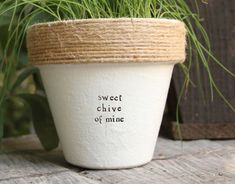 4 The Jackson Chive Indoor Herb Garden Cute Planter Plant Puns Decorated Plante. 4 The Jackson Chi Container Gardening, Gardening Tips, Organic Gardening, Gardening Quotes, Indoor Gardening, Gardening Services, Gardening Supplies, Outdoor Pots, Outdoor Gardens