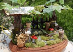 Mini Fairy Garden ideasModern Home Interior Design