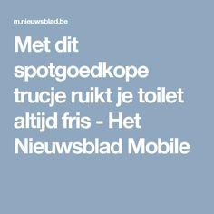 Met dit spotgoedkope trucje ruikt je toilet altijd fris  - Het Nieuwsblad Mobile