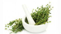 Thyme Heals All Wounds:  antibacterial, antifungal, antioxidant, and more.  I never knew thyme was such a useful medicinal herb.