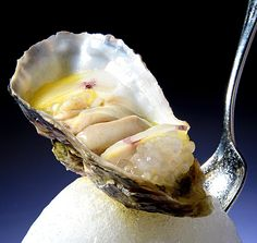 Phil Howard & Brett Graham of The Ledbury. An Obsession to be reckoned with Phil Howard, Oyster Recipes, Jewel Of The Seas, Oyster Bar, Appetizers, Appetizer Ideas, Clams, Fresh Fruit, Oysters