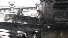 -EGIYANTINA-: Padang-padang Beach Bali