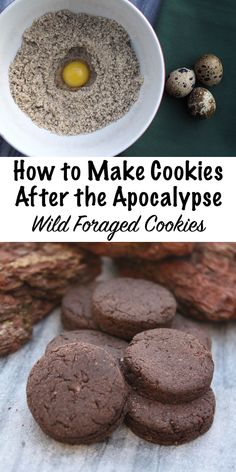 How to Make Cookies After the Apocalypse ~ Wild Foraged Cookie Recipes food Biscuits, Survival Food, Survival Skills, Survival Tips, Survival Supplies, Wilderness Survival, Survival Essentials, Survival Fishing, Survival Quotes