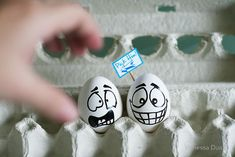 Eggventures: Funny Eggs Photography by Vanessa Dualib