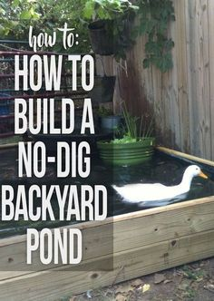 Instructions for building a backyard pond with no kit and no digging required - Modern Design Backyard Ducks, Chickens Backyard, Backyard Ponds, Patio Pond, Garden Ponds, Backyard Farming, Koi Ponds, Herb Garden, Raising Ducks