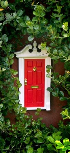 Tooth fairy door!!! Just use a doll house door, paint and hang on your wall!!! Going out today to find the door!