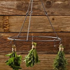 Preserve your own herbs with one of the oldest methods around: drying. Here's a roundup of our favorite herb drying racks.