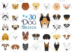 30 dog breeds Vector Collection in cartoon style royalty-free 30 dog breeds vector collection in cartoon style stock vector art & more images of american staffordshire terrier Vector Dog, Free Vector Art, Vector Stock, Eps Vector, White Terrier, Bull Terrier, Terrier Puppies, English Cocker, English Bull