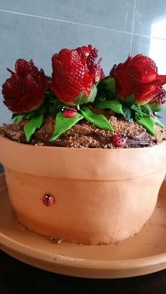Flowerpot choc mud cake with strawberry roses