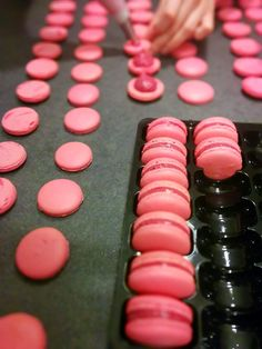 Macarons, Macaron Cookies, Macaron Thermomix, Macaron Recipe, Ganache Macaron, Meringue Pavlova, French Patisserie, Mini Burgers, Number Cakes