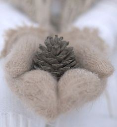 winter mittens and pine cones = love