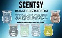 Wickless candles and scented fragrance wax for electric candle warmers and scented natural oils and diffusers. Shop for Scentsy Products Now! Scentsy Independent Consultant, Facebook Party, Photo Canvas, Burning Candle, Smell Good, Launch Party, Mixers, Savannah, Business