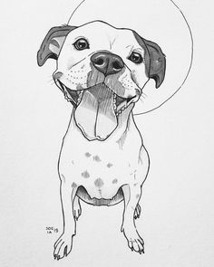 I'm a Finnish artist Sofia Härö. I've always had a love for dogs as well as art. When I decided to combine these two, the result was art challenge. I was a joy and a challenge with 30 dog drawing Animal Sketches, Animal Drawings, Drawings Of Dogs, Terrier Mix, Pitbull Terrier, Cool Art Drawings, Drawing Sketches, Staffordshire Terriers, American Staffordshire