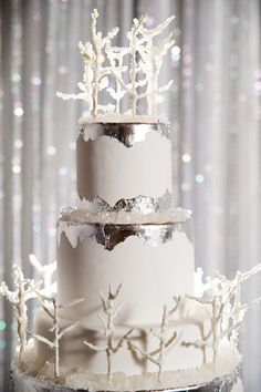 What a beautiful and ornate winter wedding cake