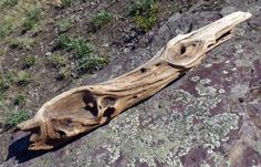 Driftwood Decorative Driftwood Driftwood by CreationsByDevlin, $18.00