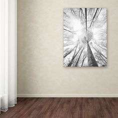 """Trademark Art """"Recall the Days"""" by Philippe Sainte-Laudy Photographic Print on Wrapped Canvas Size: Canvas Fabric, Canvas Wall Art, Canvas Prints, Outdoor Porch Bed, New Wall, Metal Wall Art, Painting Prints, Wrapped Canvas, Tapestry"""