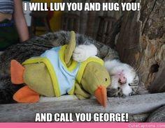 George??  hahahaha