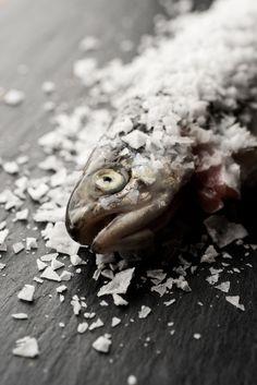 "From the photo essay ""Salt preservation"" byMartin Kaufmann FromCereal Magazine Volume 2"