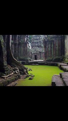 Ta Prohm Temple  Angkor, Cambodia