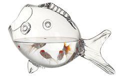 Glass Fish Container on OneKingsLane.com