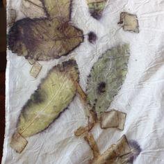 Ramon Santos elaboracion textil