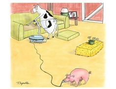 000 Funny Animal Cartoons With Captions funnycartoons