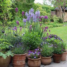 Garden Cottage, Garden Pots, Garden Arbor, Edible Garden, Herb Garden, Small Gardens, Outdoor Gardens, Chinese Garden, Dream Garden