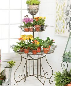 Another great find on #zulily! Three-Tier Plant Display Stand #zulilyfinds