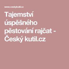 Tajemství úspěšného pěstování rajčat - Český kutil.cz