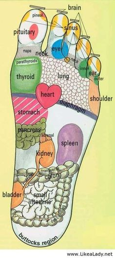 Foot reflexology : This I am fully aware of...getting foot massages in Asia often taught me volumes!