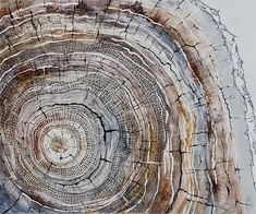 Drawing Mixed Media Vicissitude By Dmitri Albert Art Limited - Vicissitude Is A Creation By The Artist Dmitri Albert Category Other Conceptual Drawing Mixed Media This Work Reflects The Constant Changing Of Various Objective And Subjective Aspects Of Huma Forest Drawing, Nature Drawing, Drawing Art, Circle Art, Circle Drawing, Nature Crafts, Paintings For Sale, Art Paintings, Tree Art