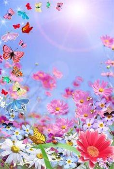I love you corazones pinterest te amo tes and love summer day summer flowers sun butterfly pretty garden sunshine seasons mightylinksfo
