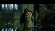 Hot GIF movies cat key and peele keanu gangsta cat